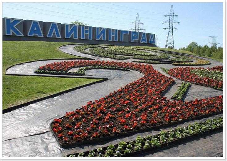 Логотипы чемпионата 2018 в Калининграде